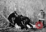 Image of injured men Nanking China, 1937, second 9 stock footage video 65675042123