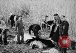 Image of injured men Nanking China, 1937, second 20 stock footage video 65675042123