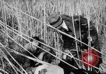 Image of injured men Nanking China, 1937, second 32 stock footage video 65675042123