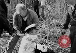 Image of injured men Nanking China, 1937, second 50 stock footage video 65675042123