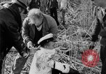 Image of injured men Nanking China, 1937, second 51 stock footage video 65675042123