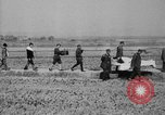 Image of injured men Nanking China, 1937, second 32 stock footage video 65675042124