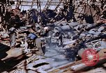 Image of ordnance plant Nagasaki Japan, 1946, second 50 stock footage video 65675042185