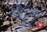 Image of ordnance plant Nagasaki Japan, 1946, second 58 stock footage video 65675042185