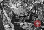Image of Jeeps in use worldwide during World War 2 United States USA, 1943, second 28 stock footage video 65675042283