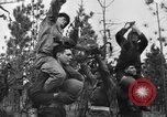 Image of Jeeps in use worldwide during World War 2 United States USA, 1943, second 39 stock footage video 65675042283