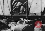 Image of Allied supplies China, 1945, second 6 stock footage video 65675042292