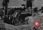 Image of house on fire China, 1945, second 19 stock footage video 65675042297