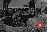 Image of house on fire China, 1945, second 21 stock footage video 65675042297