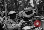 Image of American Expeditionary Forces France, 1918, second 36 stock footage video 65675042372