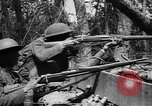 Image of American Expeditionary Forces France, 1918, second 41 stock footage video 65675042372