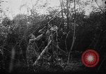 Image of German aircraft downed World War 1 with captured pilot France, 1918, second 39 stock footage video 65675042391