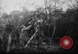 Image of German aircraft downed World War 1 with captured pilot France, 1918, second 40 stock footage video 65675042391