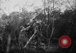 Image of German aircraft downed World War 1 with captured pilot France, 1918, second 41 stock footage video 65675042391