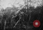 Image of German aircraft downed World War 1 with captured pilot France, 1918, second 42 stock footage video 65675042391