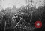 Image of German aircraft downed World War 1 with captured pilot France, 1918, second 44 stock footage video 65675042391