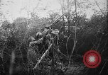 Image of German aircraft downed World War 1 with captured pilot France, 1918, second 45 stock footage video 65675042391