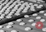 Image of Southern Biscuit Company Richmond Virginia USA, 1953, second 32 stock footage video 65675042546
