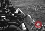 Image of Under Water Demolition Team Sea of Japan, 1952, second 24 stock footage video 65675042592