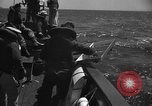 Image of Under Water Demolition Team Sea of Japan, 1952, second 36 stock footage video 65675042592