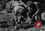 Image of United States Army African-American field artillery gun crew Mantes de Gassicourt France, 1944, second 35 stock footage video 65675042597