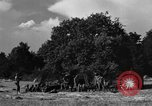 Image of United States Army African-American field artillery gun crew Mantes de Gassicourt France, 1944, second 43 stock footage video 65675042597