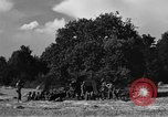 Image of United States Army African-American field artillery gun crew Mantes de Gassicourt France, 1944, second 47 stock footage video 65675042597