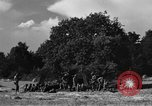 Image of United States Army African-American field artillery gun crew Mantes de Gassicourt France, 1944, second 49 stock footage video 65675042597