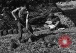Image of United States Army African-American field artillery gun crew Mantes de Gassicourt France, 1944, second 62 stock footage video 65675042597