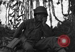 Image of Artillery Battalion of 92nd Infantry Division (Colored) Mantes de Gassicourt France, 1944, second 37 stock footage video 65675042599