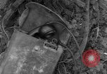Image of United States 969th Field Artillery Luxembourg, 1944, second 11 stock footage video 65675042607