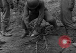 Image of United States 969th Field Artillery Luxembourg, 1944, second 34 stock footage video 65675042607