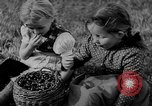 Image of German civilians in peacetime and during World War 2 Germany, 1945, second 27 stock footage video 65675042616