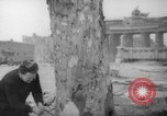 Image of cutting trees Berlin Germany, 1945, second 15 stock footage video 65675042631