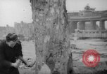 Image of cutting trees Berlin Germany, 1945, second 17 stock footage video 65675042631
