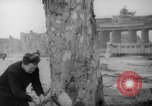 Image of cutting trees Berlin Germany, 1945, second 20 stock footage video 65675042631