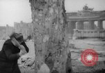 Image of cutting trees Berlin Germany, 1945, second 21 stock footage video 65675042631