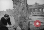 Image of cutting trees Berlin Germany, 1945, second 24 stock footage video 65675042631