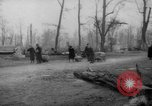 Image of cutting trees Berlin Germany, 1945, second 33 stock footage video 65675042631