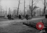 Image of cutting trees Berlin Germany, 1945, second 34 stock footage video 65675042631
