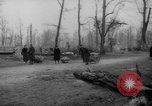 Image of cutting trees Berlin Germany, 1945, second 35 stock footage video 65675042631