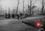 Image of cutting trees Berlin Germany, 1945, second 36 stock footage video 65675042631