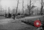 Image of cutting trees Berlin Germany, 1945, second 37 stock footage video 65675042631
