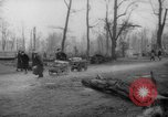 Image of cutting trees Berlin Germany, 1945, second 38 stock footage video 65675042631