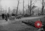 Image of cutting trees Berlin Germany, 1945, second 39 stock footage video 65675042631