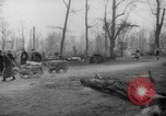 Image of cutting trees Berlin Germany, 1945, second 40 stock footage video 65675042631
