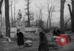 Image of cutting trees Berlin Germany, 1945, second 44 stock footage video 65675042631
