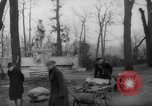 Image of cutting trees Berlin Germany, 1945, second 45 stock footage video 65675042631