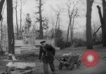 Image of cutting trees Berlin Germany, 1945, second 47 stock footage video 65675042631