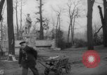 Image of cutting trees Berlin Germany, 1945, second 48 stock footage video 65675042631